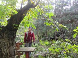 25.09.12_Przygotowka_do_obcinki_drzew_4.jpg